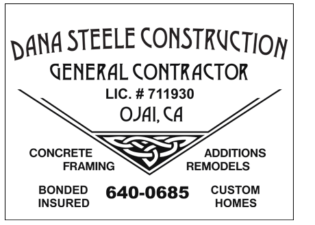 Dana Steele Construction Logo